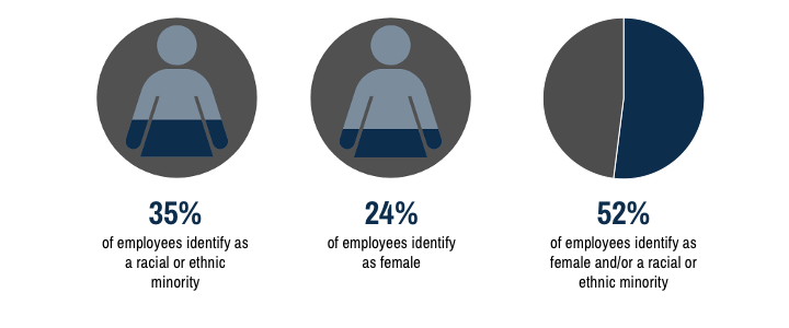Three pie charts. One showing that 35% of employees identify as racial or ethnic minorities, the second showing that 24% of employees identify as female, and the last showing that 52% of employees identify as female and/or racial or ethnic minorities.